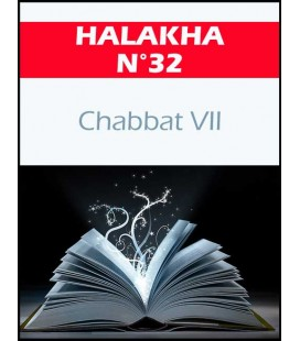 HALAKHA N 32 chabat VII (pdf)