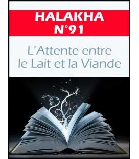 HALAKHA N 91 Attente entre le lait et la viande (pdf)
